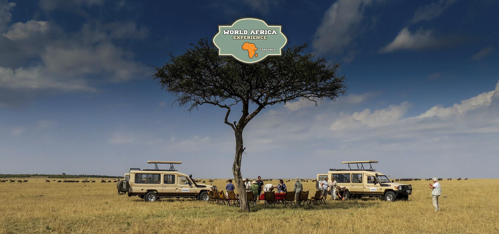 SAFARIS A MEDIDA EN TANZANIA